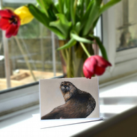 A6 Otter Greetings Card