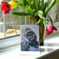 A6 Gorilla Greetings Card