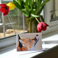 A6 Aphrodite Fox Greetings Card