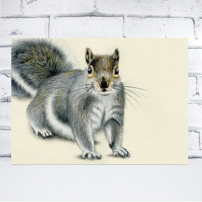 A4 Grey Squirrel Print