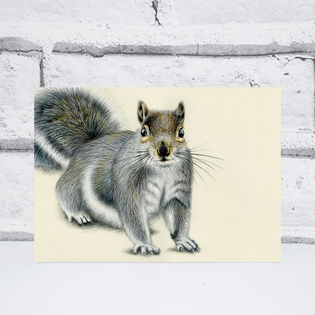 A5 Grey Squirrel Print