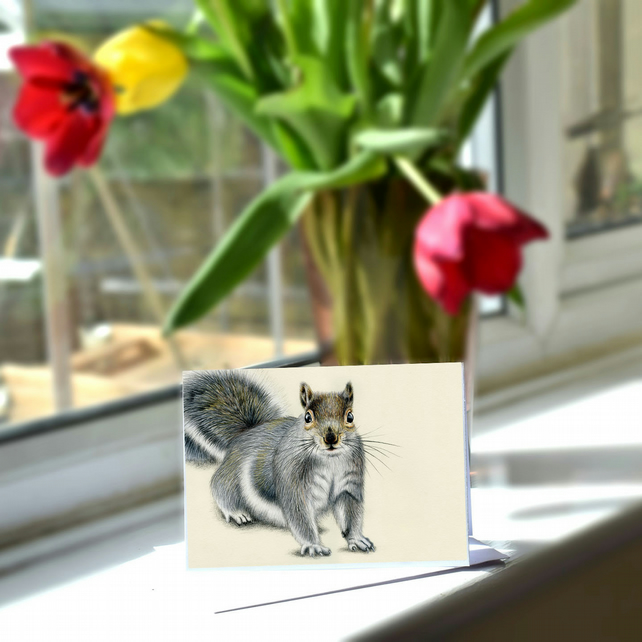 A6 Grey Squirrel Greetings Card