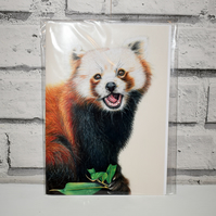 A5 Handmade Red Panda Notebook
