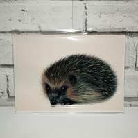 A5 Handmade Hedgehog Notebook