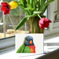 A6 Rainbow Lorikeet Greetings Card