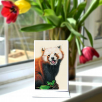 A6 Red Panda Greetings Card