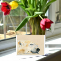 A6 Arturo Polar Bear Greetings Card