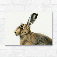 A3 Hare Print