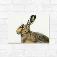A4 Hare Print