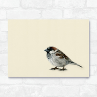 A3 Common Sparrow Print