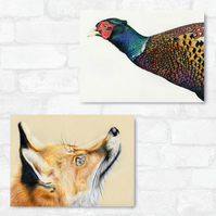 A3 Aphrodite Fox & Pheasant Bundle