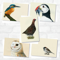 A6 'Feathers' Greetings Card Pack