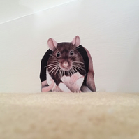 Rat in hole (Ratty) wall decal