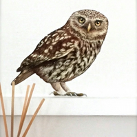 Wall Decal - Oswald Little Owl