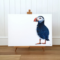 Puffin Limited Edition Canvas Print - Puffin Painting