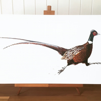 Running Pheasant limited edition canvas print - pheasant painting