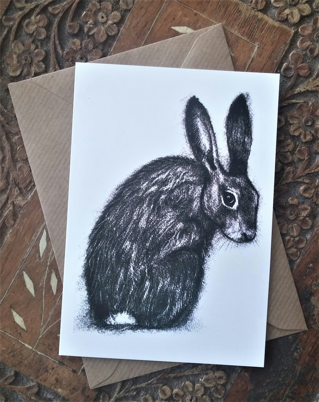 Coy Hare Charcoal Drawing Blank Art Card