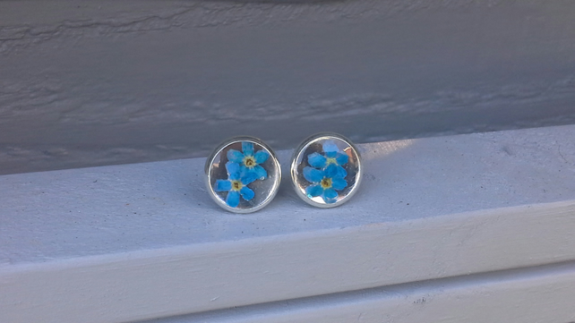 Round Stud Earrings with Blue Forget-Me-Not Flowers Embedded in Clear Resin