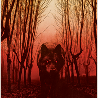 Black Dog, Wolf, Gwyllgi, Black and Red Illustration, Dark Art, A5 Art Print