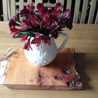 Waney edged yew cheeseboard with deep gnarls, knots and magenta flare