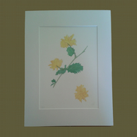 Kerria Japonica flowers yellow Easter Rose limited edition botanical art print