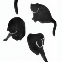 Cat card, black cats, good luck card, card with cats, lots of cats, stencil cats