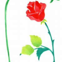 Handmade card, red rose card, rose, flower note cards, botanical art cards