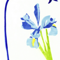 Iris card, blue flower card, flower note cards, botanical art cards, gift card