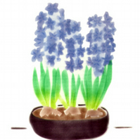Hyacinths, botanical art card, flower note cards, blue flowers, thank you card