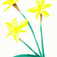 Easter card, spring flowers, Daffs card, daffodils, flower note cards, botanical