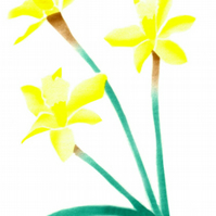 Easter card of spring flower, Daffs card, daffodils flower note cards, botanical