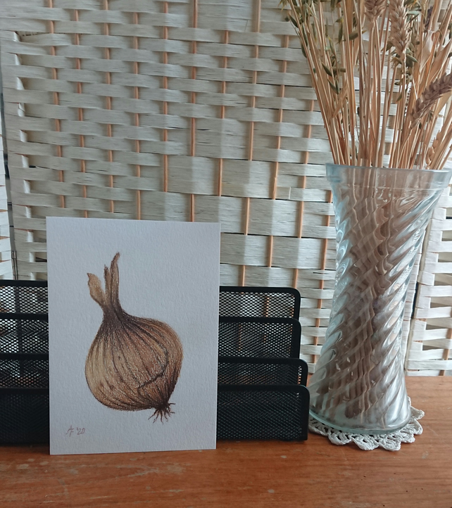 Onion original pencil drawing and handmade cards