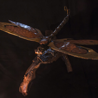 Copper and Brass Dragonfly