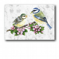 A6 Animal British Bird Wildlife Blue Tits Greetings Birthday Card (F249)