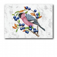 A5 Animal British Bird Wildlife Bullfinch Greetings Birthday Card (F250)