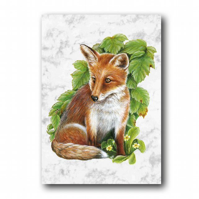 A5 Fox Greetings Card on Marble board (F251)
