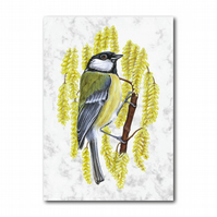 A6 Animal British Bird Wildlife Great Tit Greetings Birthday Card (F255)