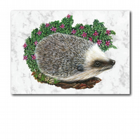 A5 Animal British Wildlife Hedgehog Greetings Birthday Card (F258)