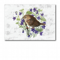 A6 Animal British Bird Wildlife Wren Greetings Birthday Card (F260)