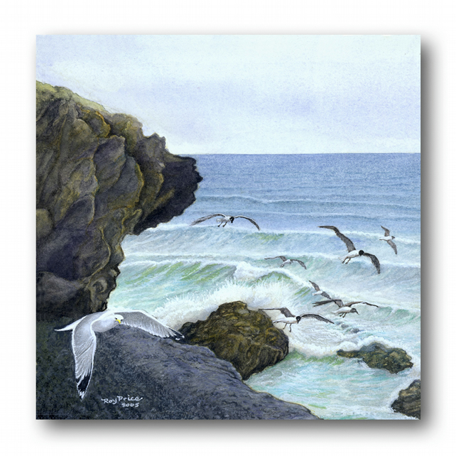 Greetings Card - Seagulls over Cornwall, from a painting by Royden Price (F269)