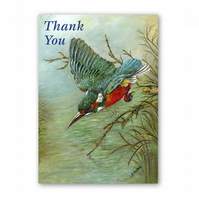 A5 Animal British Bird Wildlife Thank You Card - Kingfisher (F343)