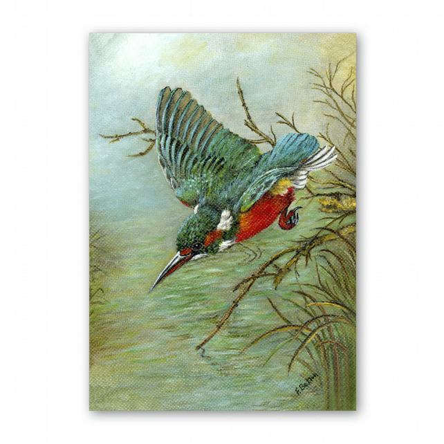 A5 Animal British Bird Wildlife Father's Day Card - Kingfisher (F346)