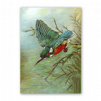 A5 Animal British Bird Wildlife Mother's Day Card - Kingfisher (F345)