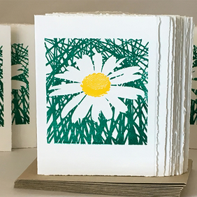 Daisies!! - Greetings Card
