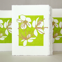 May Blossom - Greetings card or Notelet