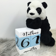Personalized Baby Age Blocks for newborn, boys, girls