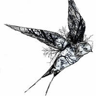 The Swallow - Limited Edition Print