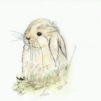 Easter Bunny - 4pp A6 Easter Greetings Card - Free Postage