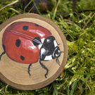 Original ladybird painting on a slice of cherry wood.