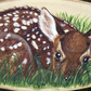 Original painting of a young deer on a slice of ash wood